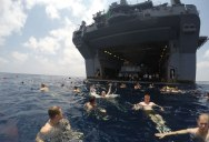Picture of the Day: Swim Call in the Gulf of Aden