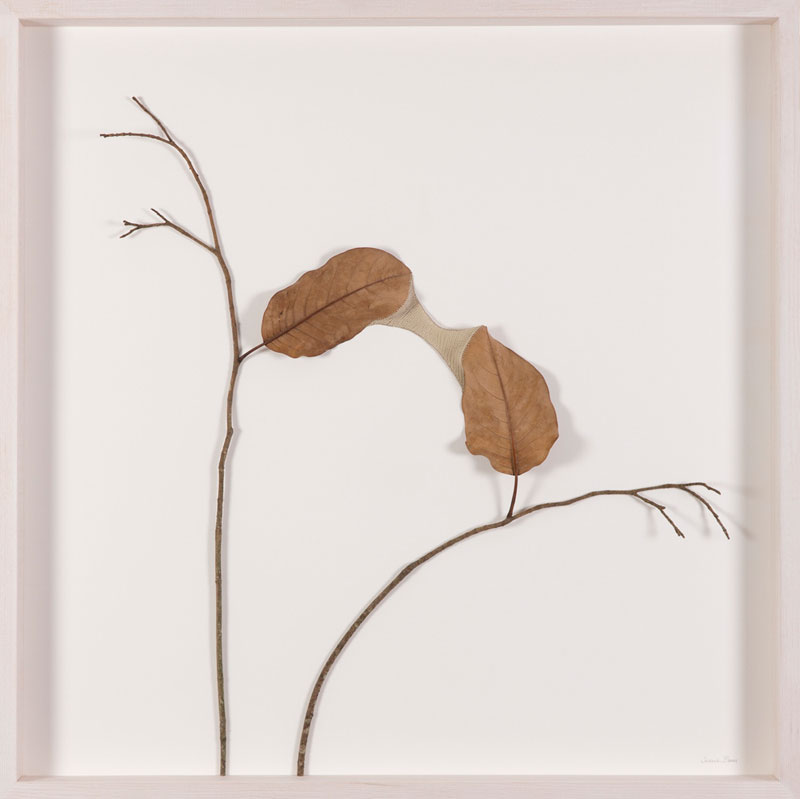 3d leaf crochet by susanna bauer (3)