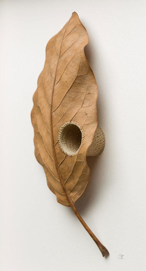 3d leaf crochet by susanna bauer (8)