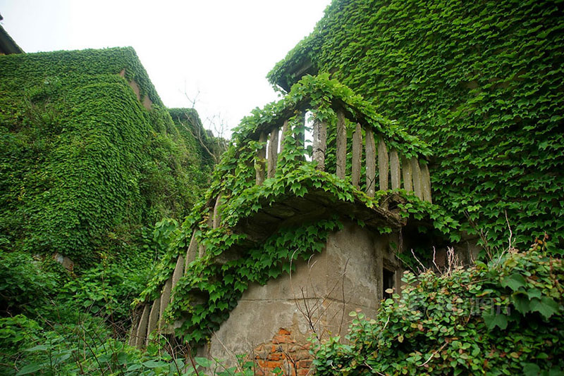 abandoned village in chia overtaken by nature (4)