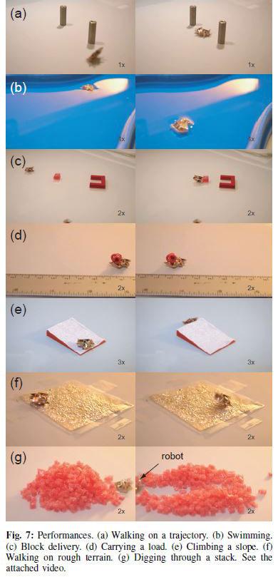 Tiny Self-Folding Origami Robot Can Walk Swim and Degrade (3)