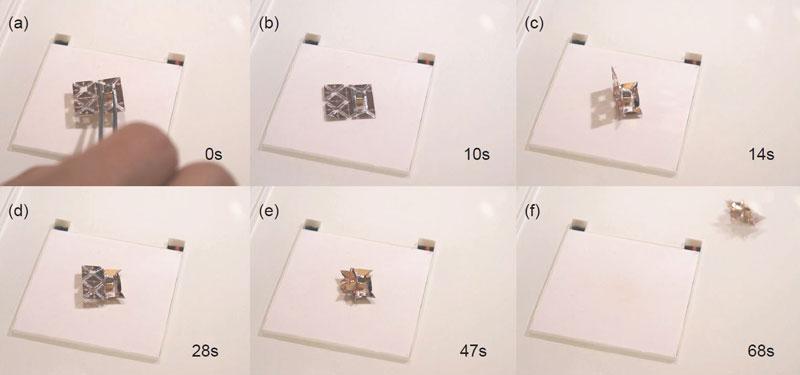 Tiny Self-Folding Origami Robot Can Walk Swim and Degrade (6)