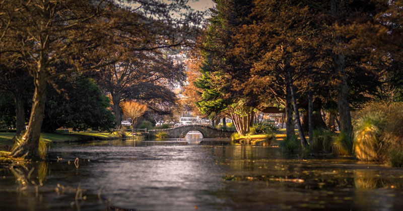 Picture of the Day: The Bokeh Panorama