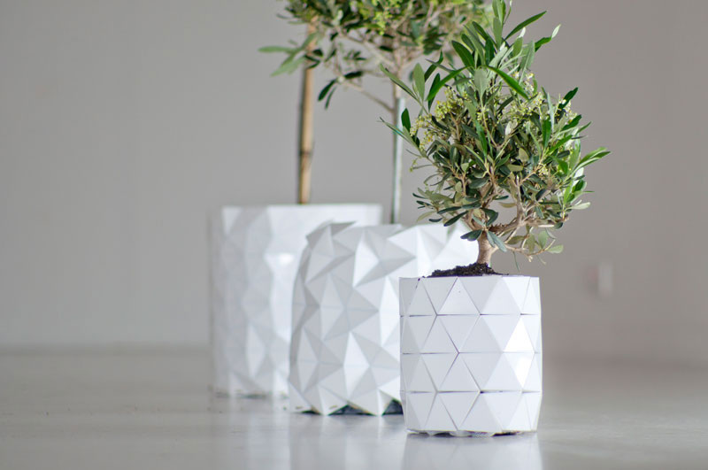 flower pot grows as plant does growth by studio ayaskan (4)