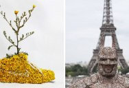 Artist Turns Shoes Into Gardens… and Makes a Batman Suit Out of Bark