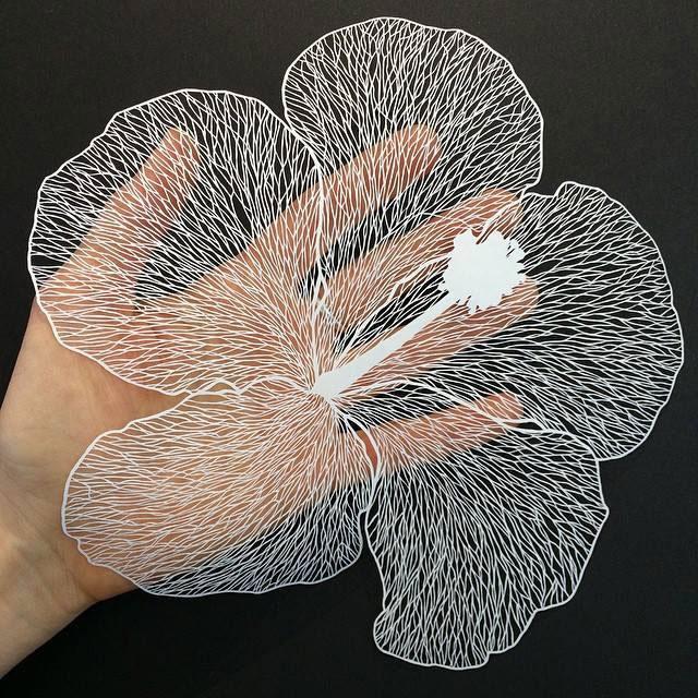 paper art by maude white (12)