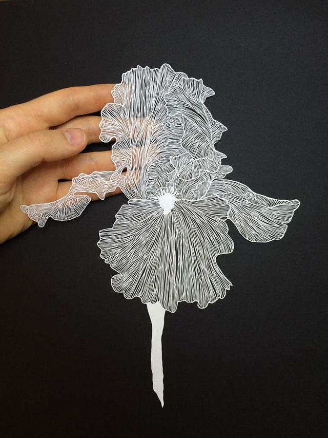 paper art by maude white (15)
