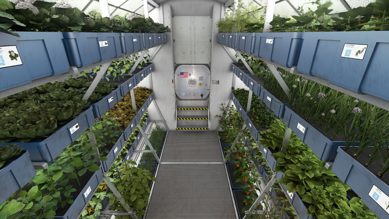 astronauts on iss eat veggies grown in space (2)