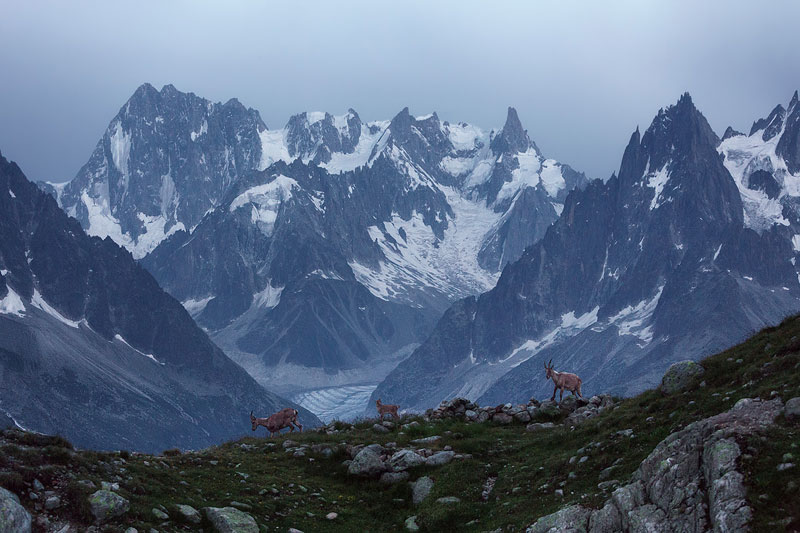 french alps photo tour by lukas furlan (4)