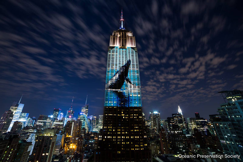 projecting change the empire state building ops obscura digital (1)