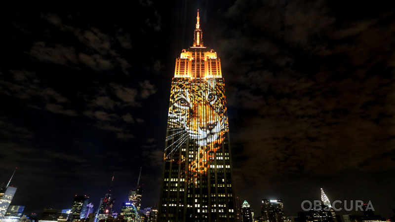 projecting change the empire state building ops obscura digital (2)