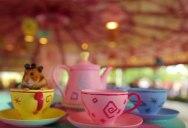 Tiny Hamster Goes to Disney World