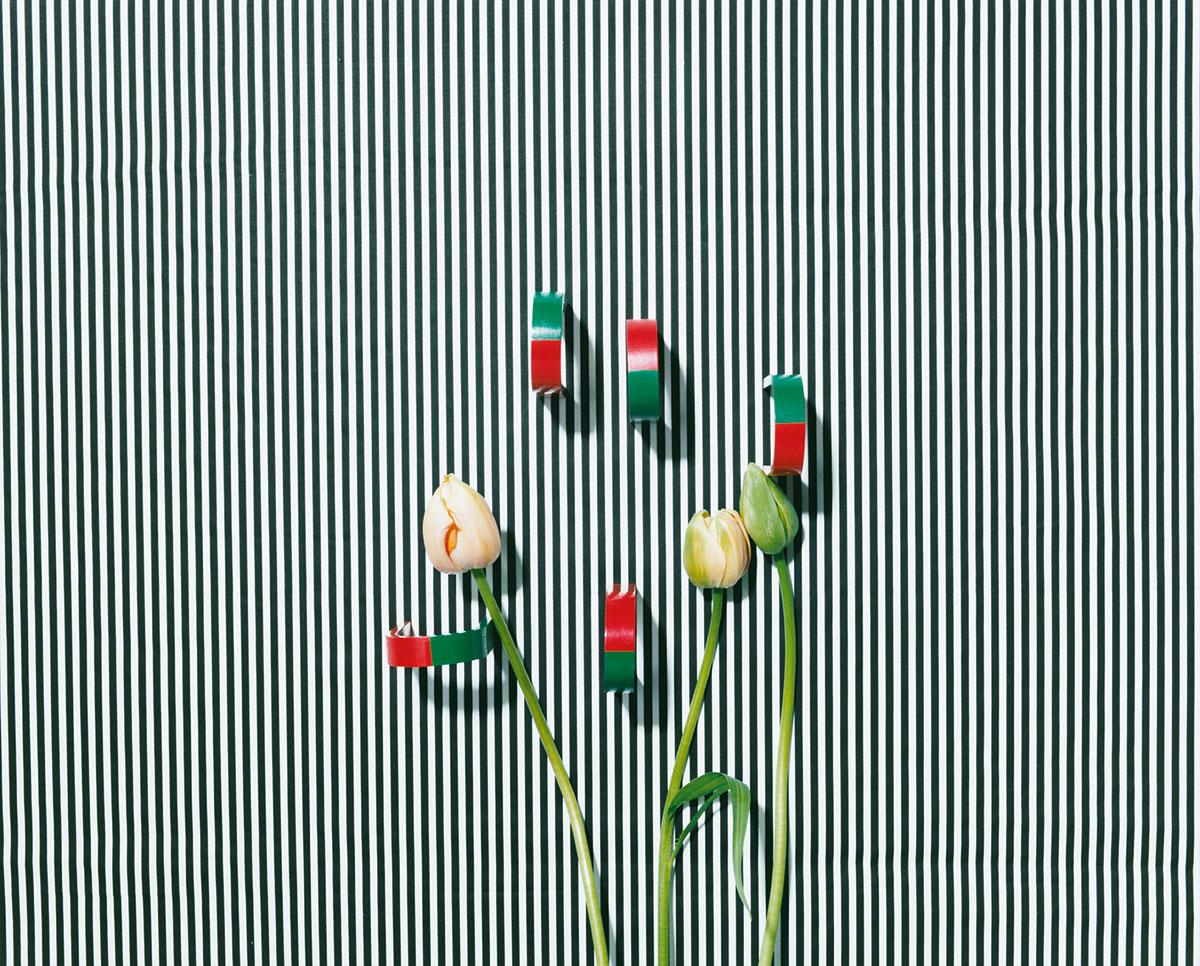 KELM-untitled_tulpe_magnete_rgb_akf236