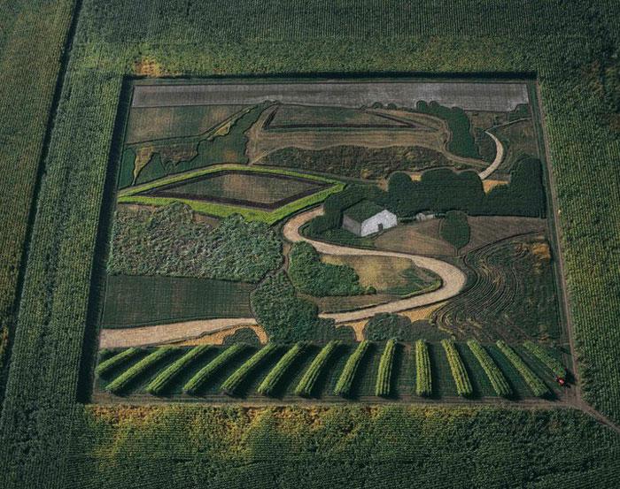 land crop art by stan herd (1)