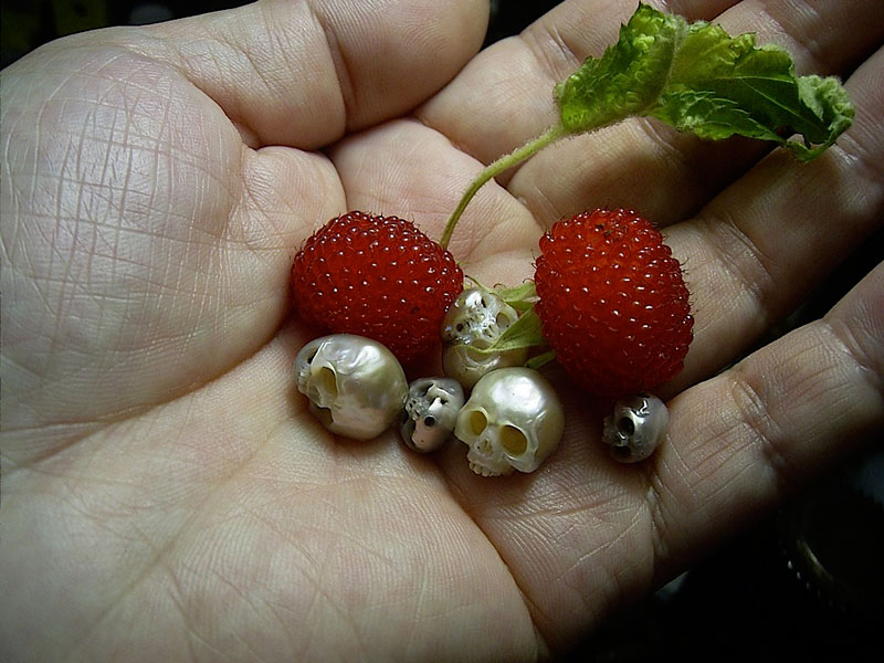 pearl skulls by shinki nakaba (3)