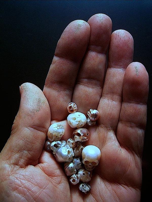 pearl skulls by shinki nakaba (5)
