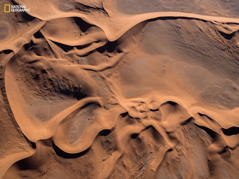 dunes' picture