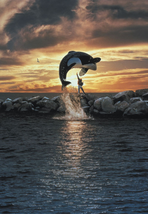 29---Free-Willy