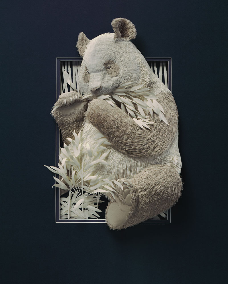 3d paper animal sculptures by calvin nicholls (4)