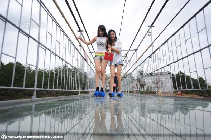 glass suspension bridge shiniuzhai national geological park hunan china (5)