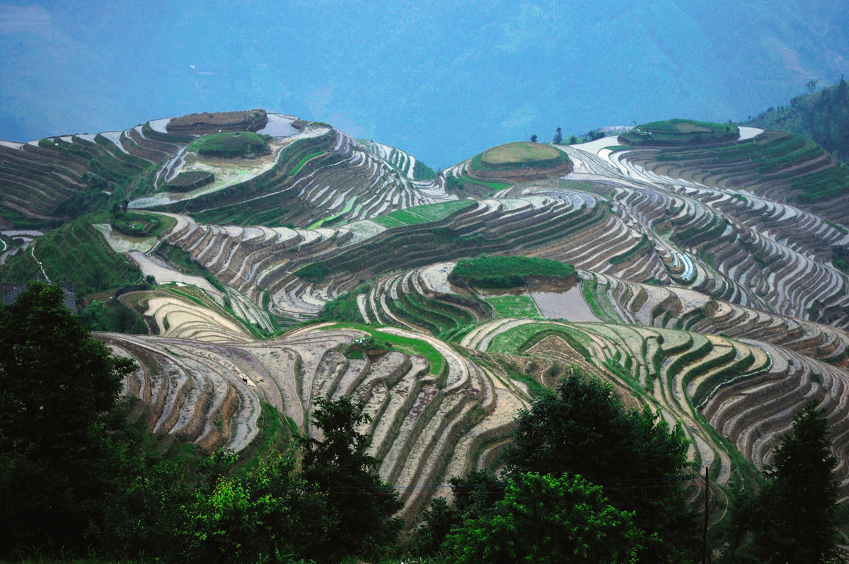 longsheng rice terraces guilin china The Top 100 Pictures of the Day for 2015