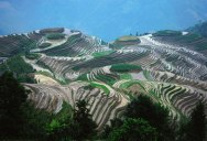 Picture of the Day: The Longsheng Rice Terraces of China