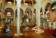 There's a Museum in France Dedicated to Hyperrealistic Miniature Film Sets