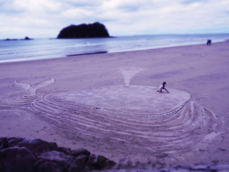 3d beach whale sand art by jamie harkins Picture of the Day: A Different Kind of Beached Whale