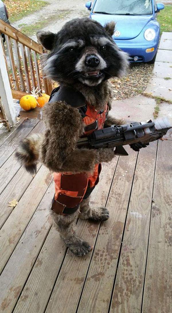 creative halloween costumes 2015 (14)