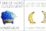 These Puns are Terrible and I Love Them (18 Photos)