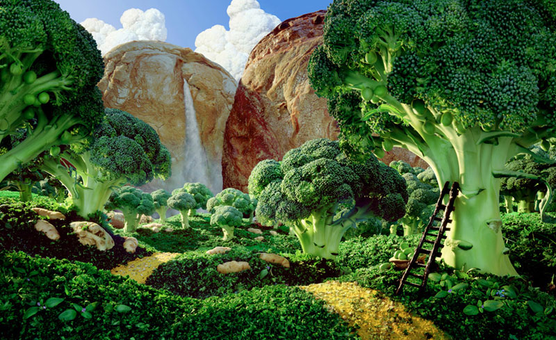 carl warner makes landscapes out of anything (12)