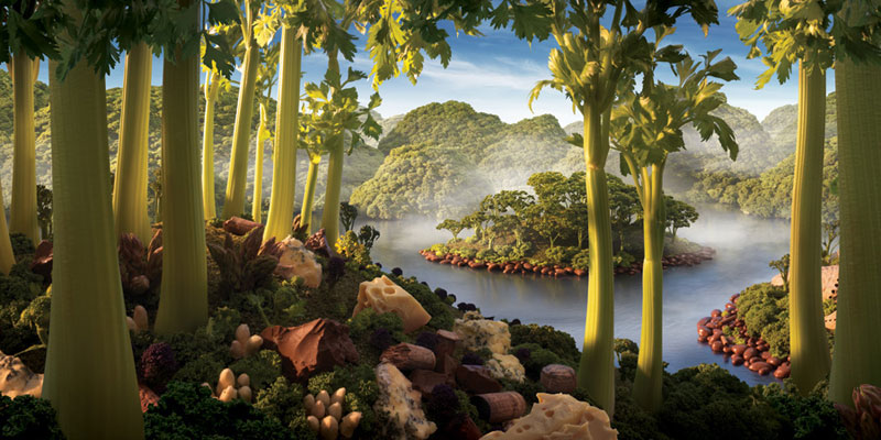 carl warner makes landscapes out of anything (21)