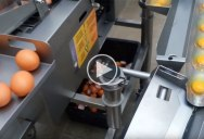 What Industrial Egg Breakers and Separators Look Like