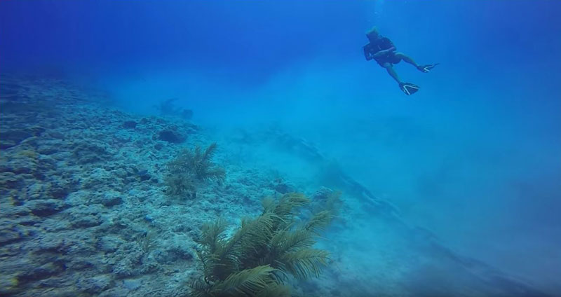 scuba divers capture shocking reef damage casued by anchored cruise ship