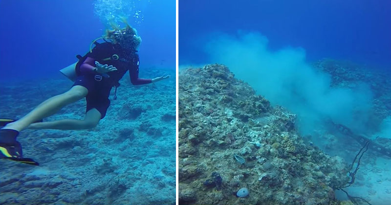 Scuba-Divers-Capture-Shocking-Reef-Devastation-Caused-by-Anchored-Cruise-Ship.jpg-(9)
