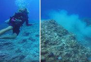 Scuba Divers Capture Shocking Reef Devastation Caused by Anchored Cruise Ship