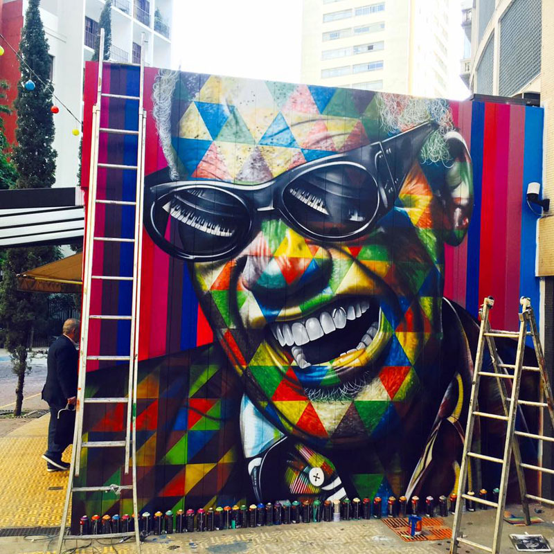 street art portraits by eduardo kobra (18)