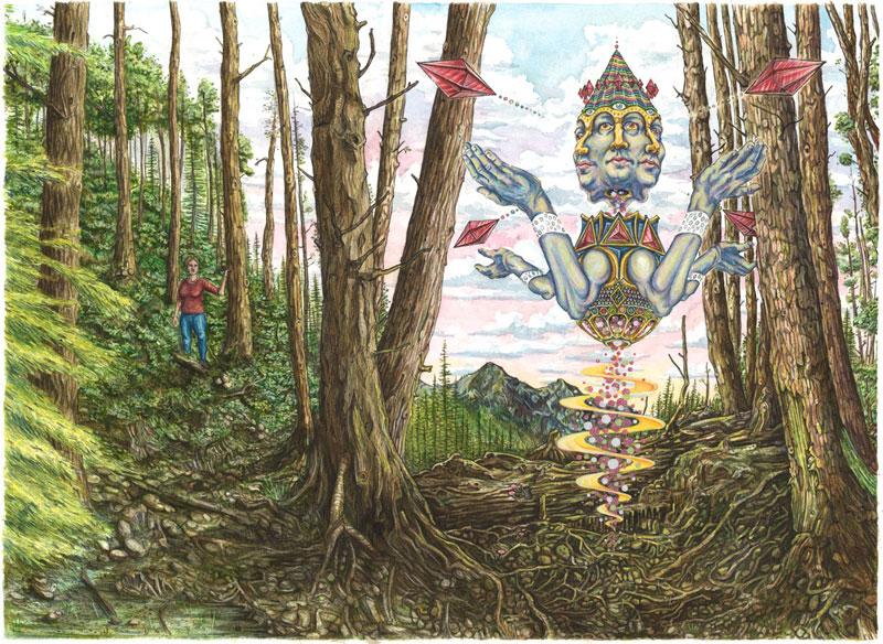 the woods timelapse illustration by jake lockett (2)