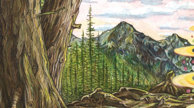 the woods timelapse illustration by jake lockett (6)