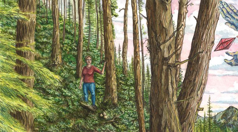 the woods timelapse illustration by jake lockett (7)
