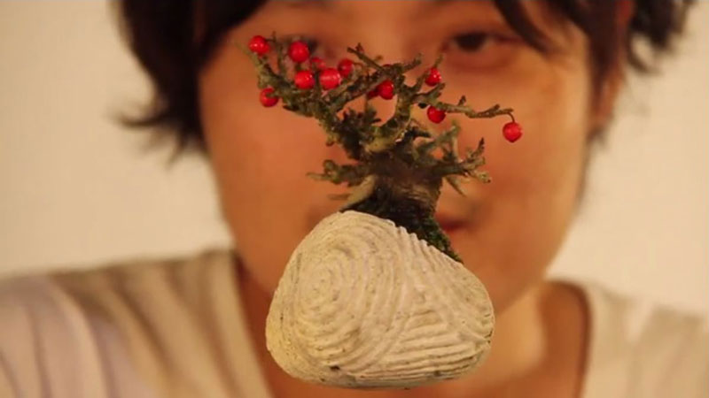 floating air bonsai by hoshinchu on kickstarter (5)