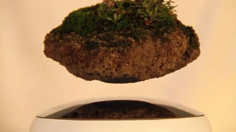 floating air bonsai by hoshinchu on kickstarter (7)