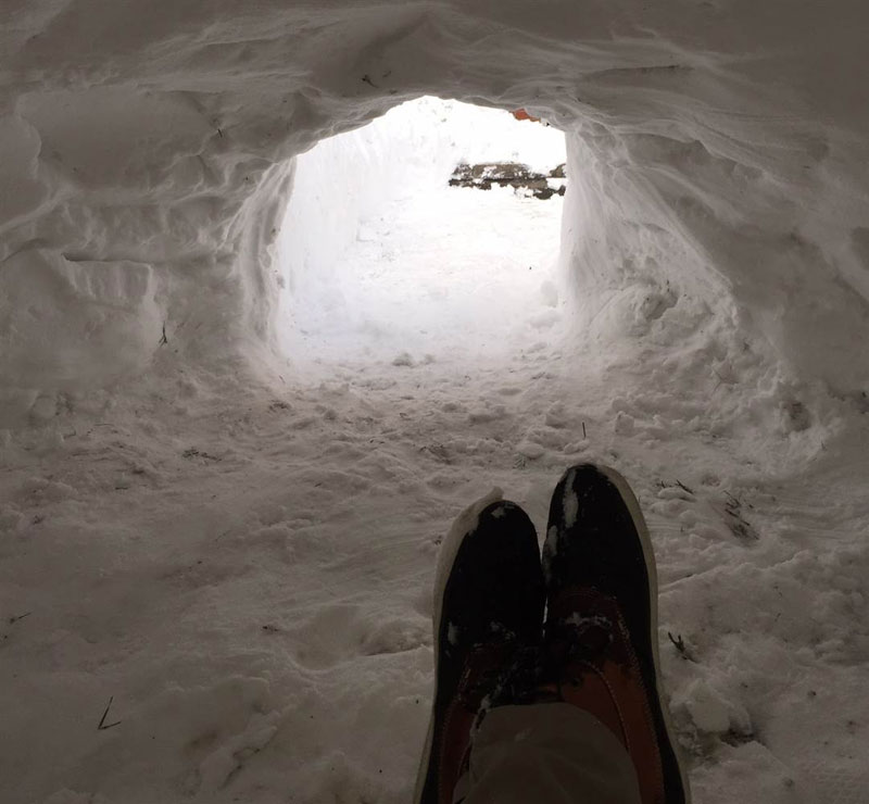 guy builds igloo lists on airbnb for 200 brooklyn new york (1)