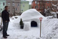 Guy Builds Igloo in Brooklyn and Lists on Airbnb for $200 a Night
