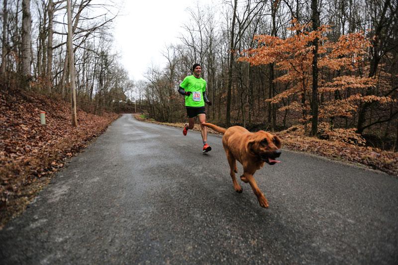 ludivine hound dog runs half marathon comes 7th alabama (3)