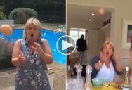 Guy Spends a Year Tossing Eggs To His Unsuspecting Mom