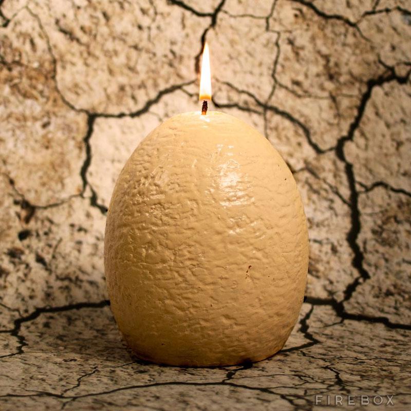 hatching dinosaur candle (3)