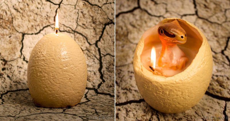 Hatching Dinosaur Candle Reveals Baby Raptor You Can Keep