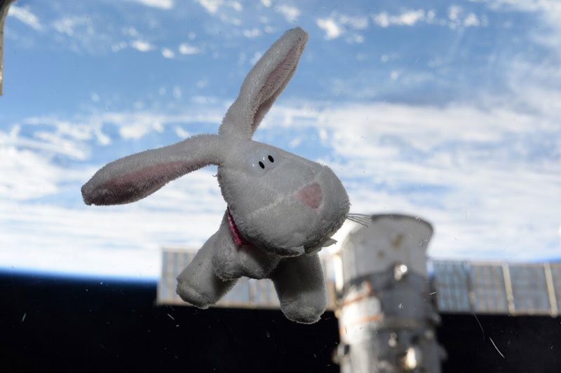 Picture of the Day: Happy Easter from Space