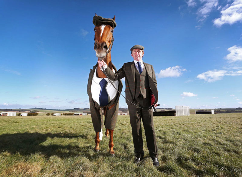 Horse in a Tweed Suit Looking Absolutely Dapper (2)